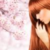 桜とアロマのヘアカラー~脳の健康を考えたヘアカラーシステム~