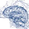 頭部デトックスシステム「漢方薬アロマタッチ」で物忘れ対策
